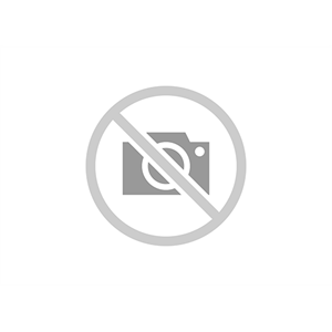 2CKA001710A3617 ABB Busch-Jaeger Insert/cover for communication technology